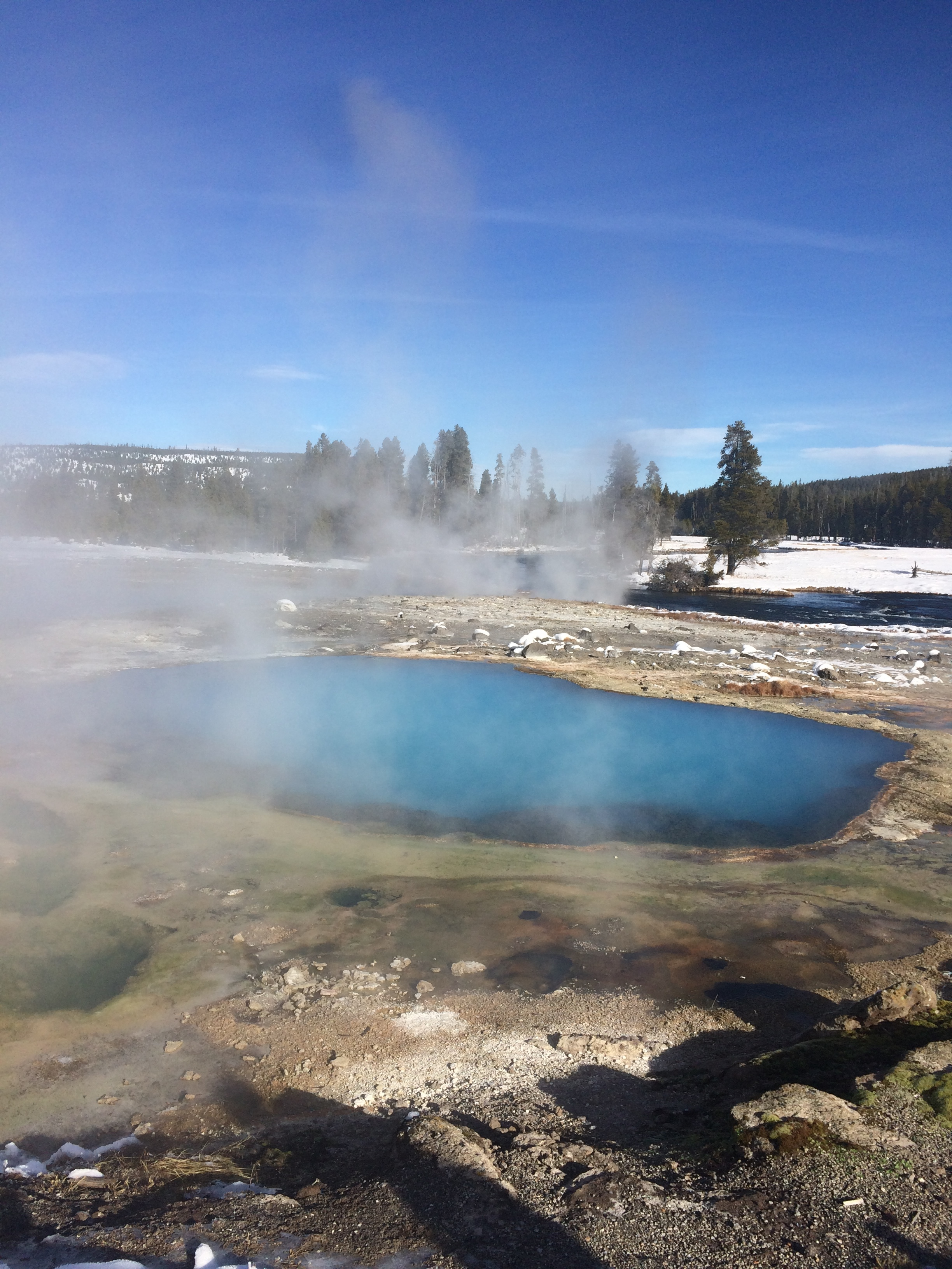 Colors in Yellowstone are indicative of temperatures. Different microbes live in different temperature ranges and the reflection of sunlight on those microbes creates different colors. However, blue indicates the scattering of sunlight which means there are no microbes living in that environment because its too hot.