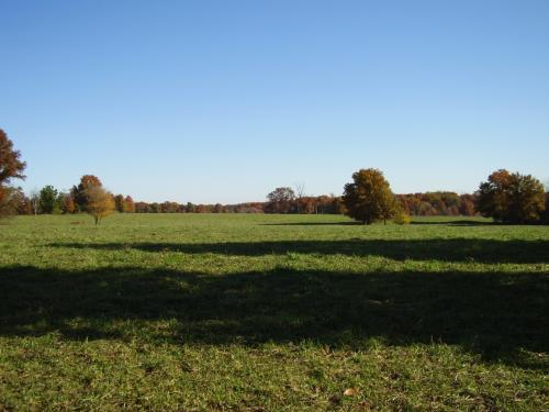 Field in Audrain County.jpg