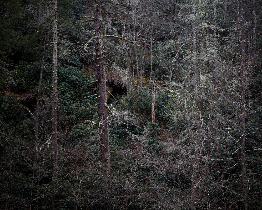 'Wandering In Place' project