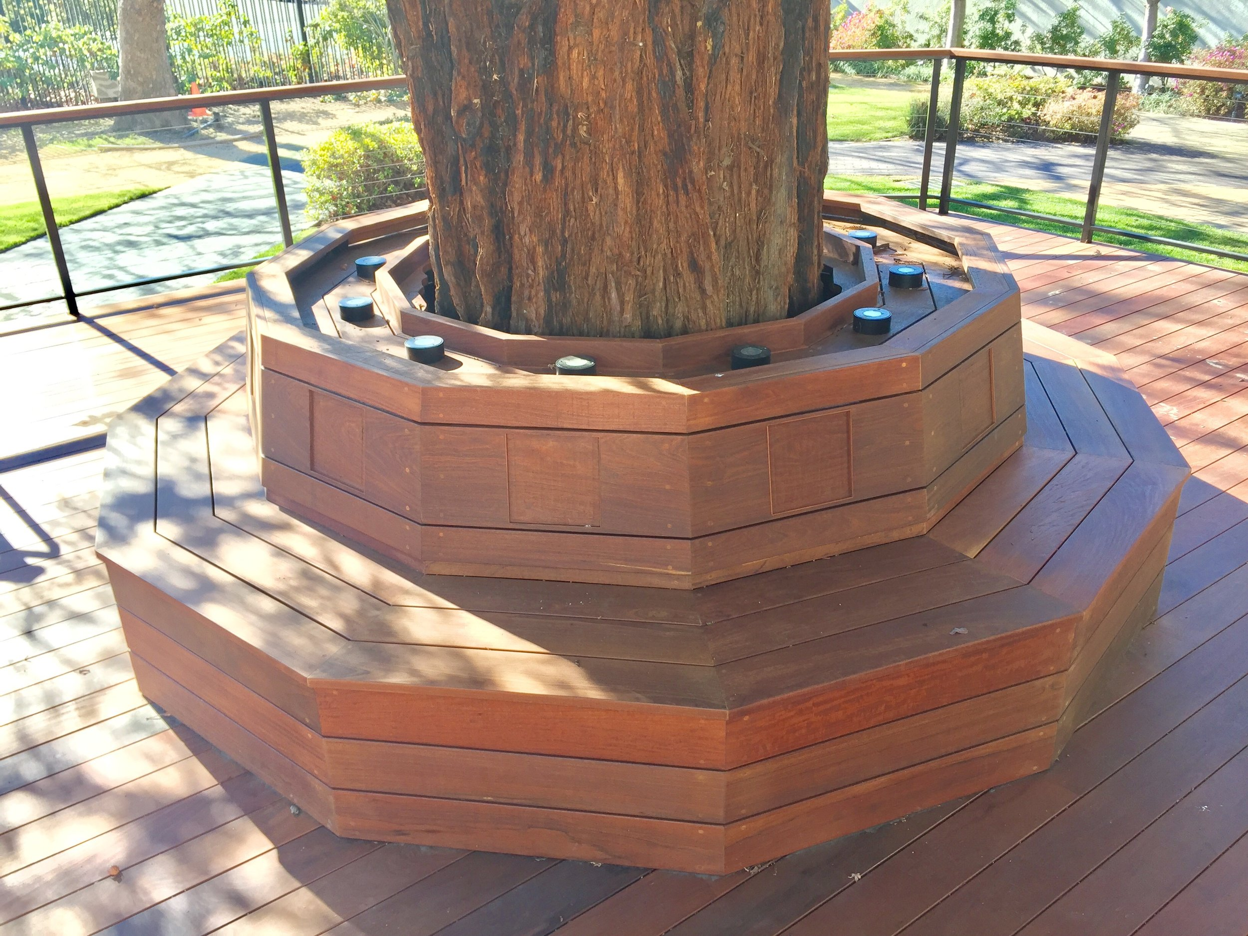 MUSEUM IPE BENCH AND DECK