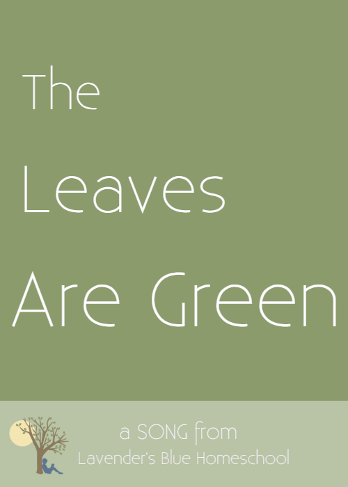 Blog Image - TheLeavesAreGreen.png