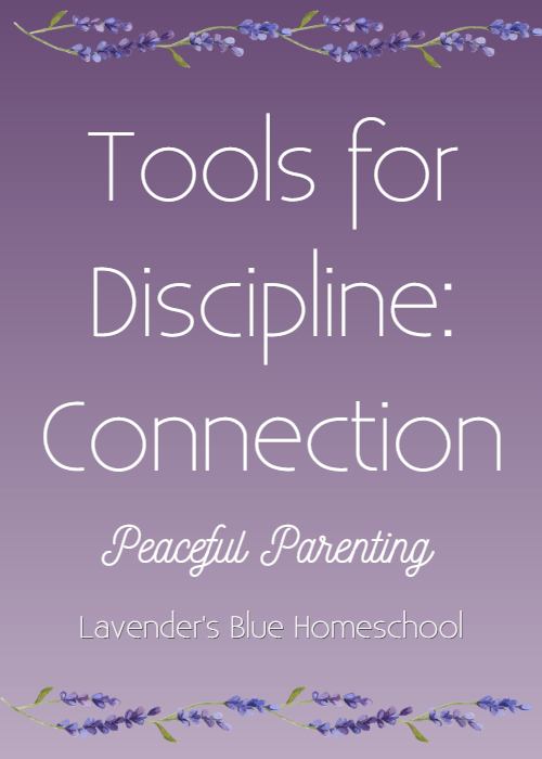 Blog Image-ToolsforDisciplineConnection.png