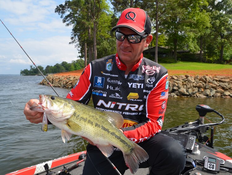 Kevin VanDam, a four-time Bassmaster Classic champion from Kalamazoo, Mich., admires a bass he caught on a topwater bait while fishing at Toledo Bend Reservoir on the Louisiana-Texas line near Many, LA.  (Photo by John N. Felsher)