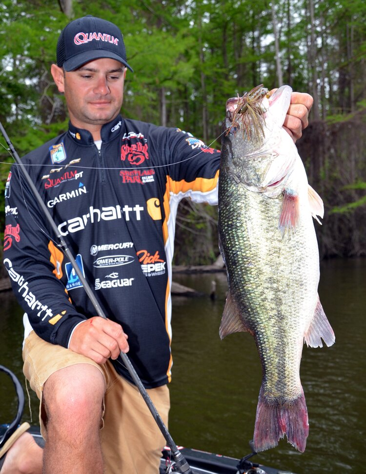 Matt Lee, a bass pro from Guntersville, Ala., admires a bass he caught on a jig while fishing at Toledo Bend Reservoir on the Louisiana-Texas line near Many, LA. With hundreds of coves and tributaries, anglers can find more than 1,200 wooded shoreline miles to fish at the Big Bend. (Photo by John N. Felsher)
