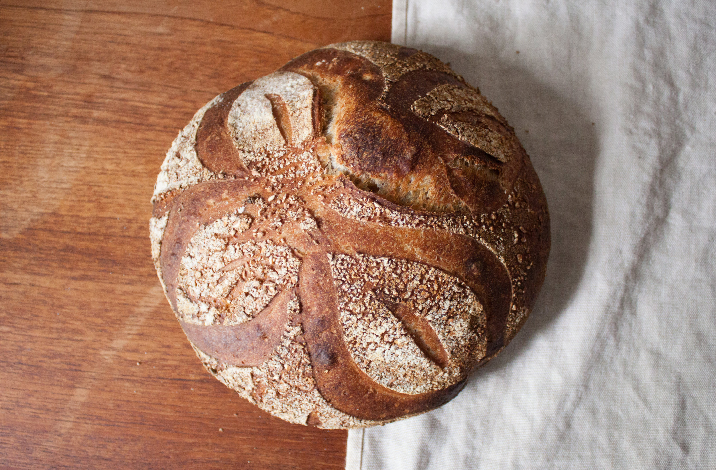Einkorn whole wheat - Einkorn is our favorite ancient grain. This is a mix of whole fresh milled einkorn, high-extraction NY state whole wheat and white flour. Coated in coarse ground einkorn wheat.