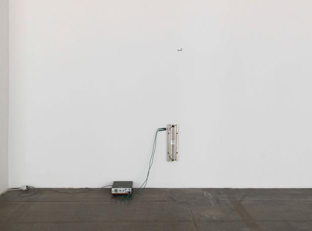 Nina Canell,  Present Tense,  2014.