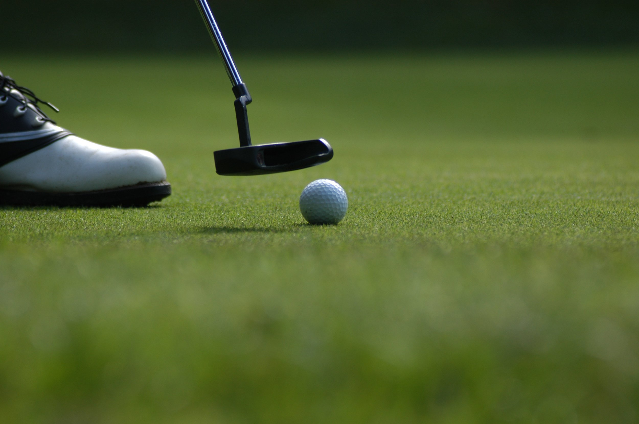 - Ed Sisk Memorial Golf Classic