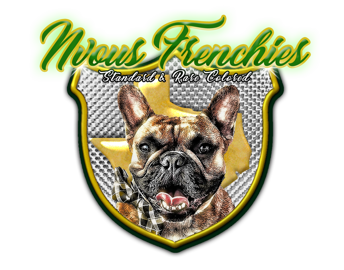 Welcome to NVous Frenchies - NVous Frenchies is a family owned business located in North Texas. Our program is built on a foundation of love for the french bulldog breed. Breeding is a distant second to the fact that our dogs are our family FIRST. Our program specializes in world class breeding of rare colored french bulldogs. Health, structure, and temperament come first and foremost when selecting breeding pairings.We are dedicated to providing your family with the love, companionship, and joy that only a frenchie can bring!
