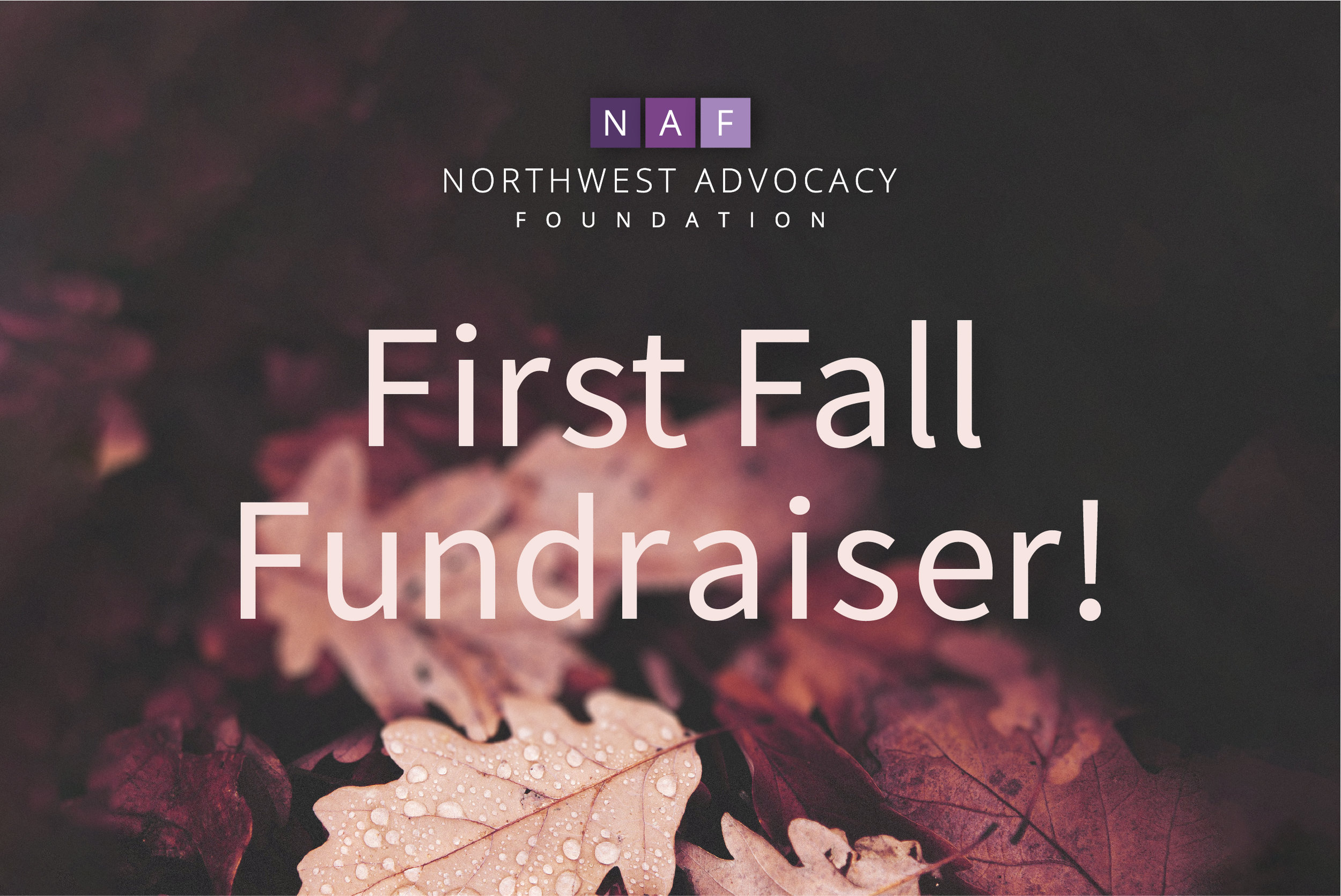 1a First Fall Fundraiser.jpg