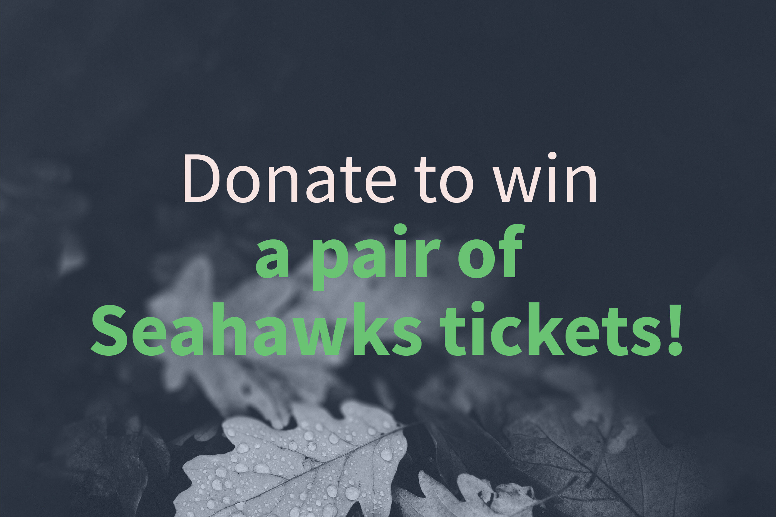 191003a donate_seahawks.jpg