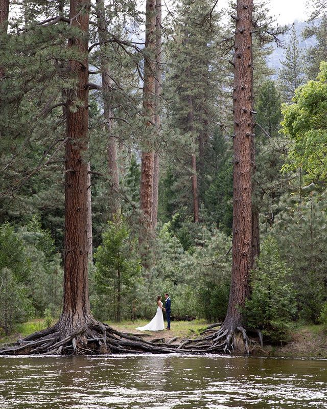 Yosemite may be crowded in the summer, but it's not hard to find a peaceful place for a quiet, post-ceremony photo op if you know where to look. Jaw dropping nooks like this are just about everywhere.🌲