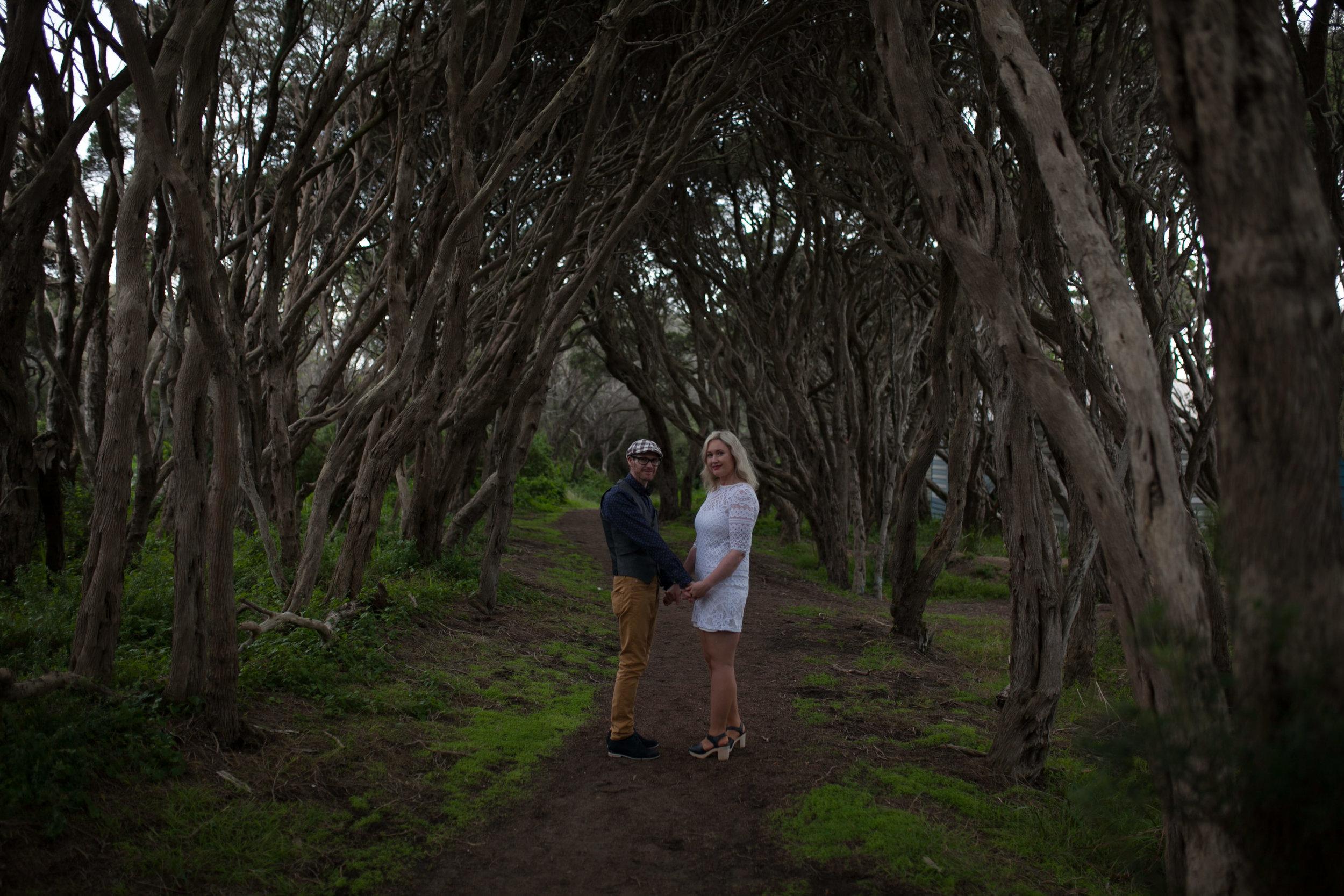 Split toning beach trees-1-2.jpg