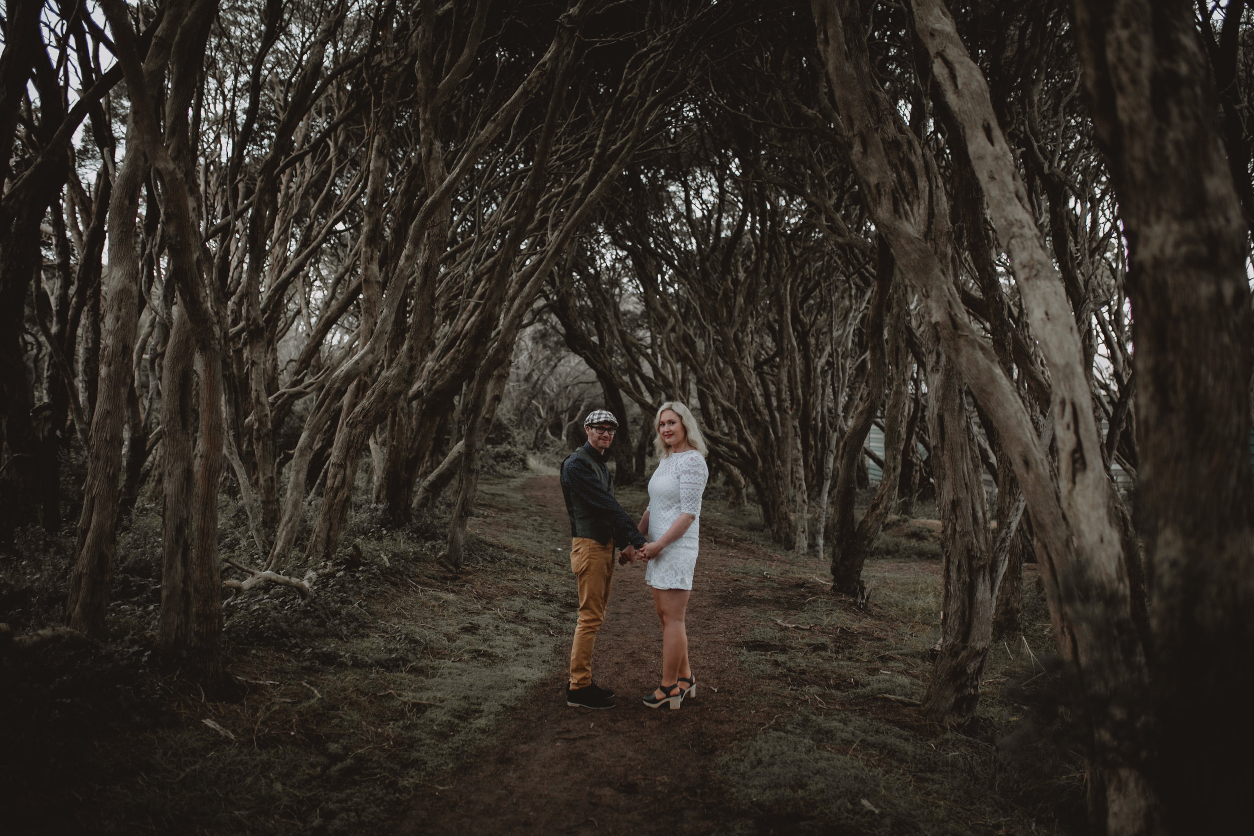 Split toning beach trees-1.jpg