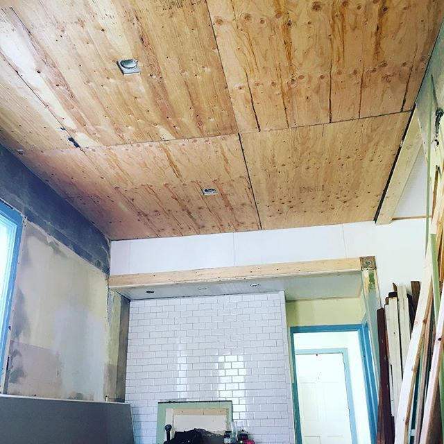 Plywood up means I can start installing the old ceiling tin! It appears the tin needs a good cleaning as well. And I'm not opposed to taking bets on how long this project will take me. 💵🐢😂 #victorianrenovation #diyrenovation #tinceiling #architecturalsalvage #slowbutsteady #turtlespeed #turtlepower