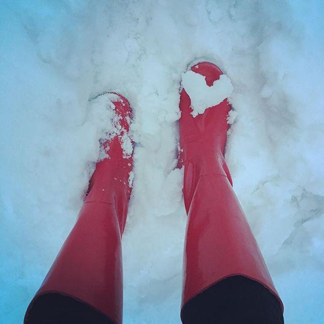 Happy snowy Valentine's Day! #winteringunnison #bringit #wellies