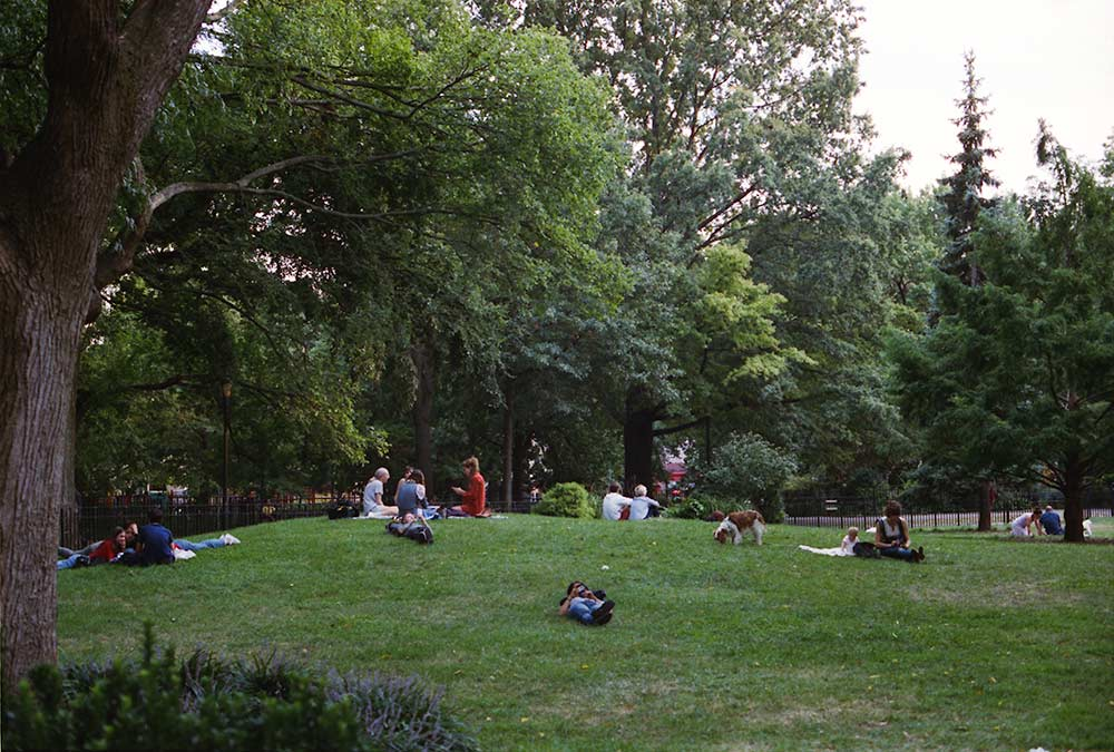 Then there's those Saturday mornings in Tompkins Square Park....