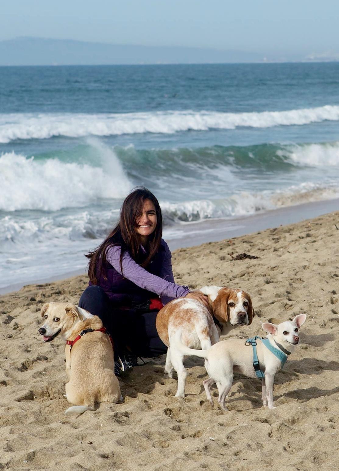 Mariela Rassouli dog trainer, KPA CTP, CPDT-KA, Nose Work Instructor, APDT, PPG, Force Free, Pet Sitters International.