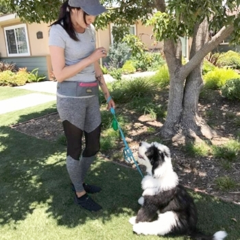 Individual private dog walker for new puppy, fearful dog, aggressive dog in Orange County- Costa Mesa, Irvine, Newport Beach.