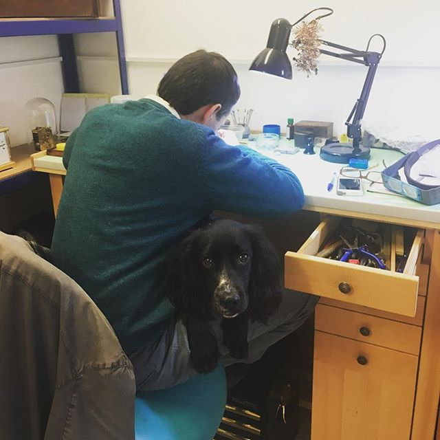 We've reached our first milestone - 100 followers! Thank you to everyone who's shown an interest in our little workshop so far, we're really enjoying sharing what we do 😊 To celebrate here's a photo of Simon hard at work with a Woo on his lap 😂 #antiqueclocks #clockrepair #clockmaker #clockworkshop