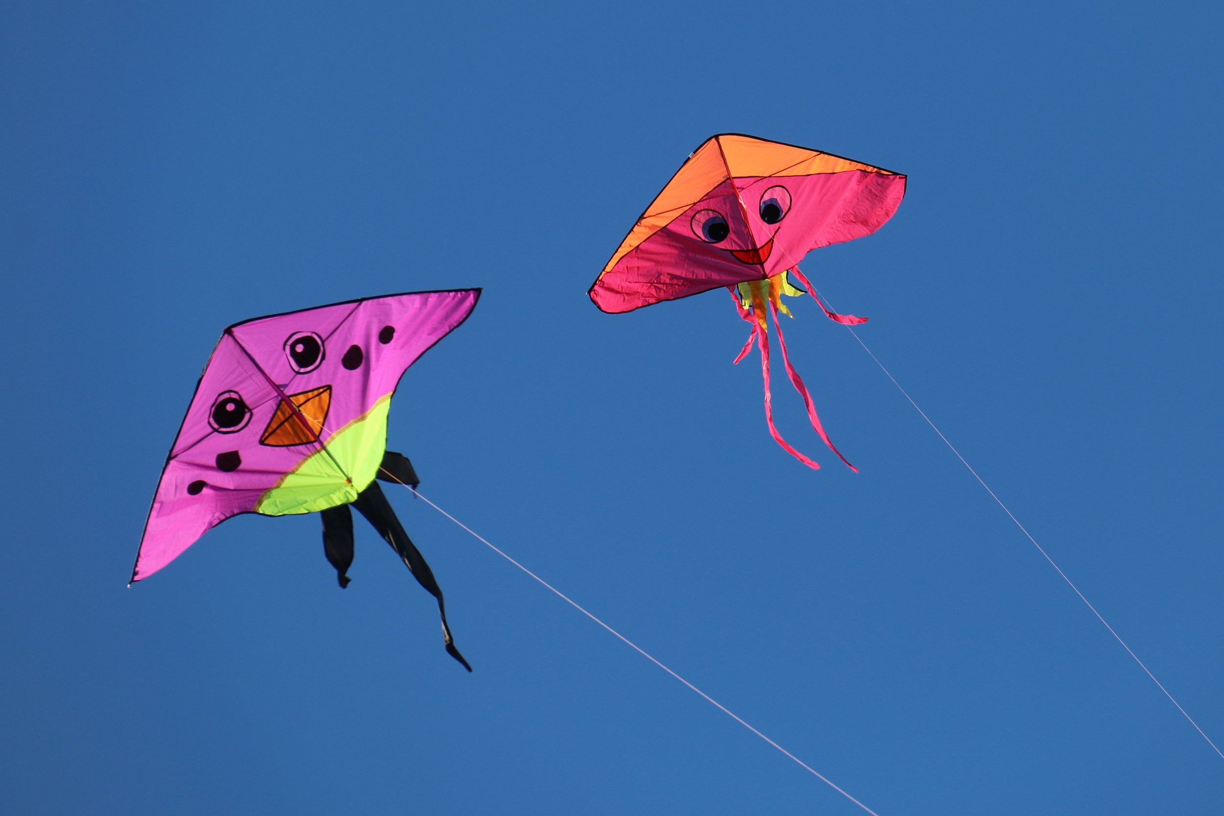 Kite Festival - April 27th 2-3:30pm & 28th 1:30-3pm 2019 View Morro Bay's Kite Festival while cruising the bay aboard the Dos Osos boat. Kids and families welcome aboard to see the Kite Festival like never before!Two days, two trips available, at 2pm Sat & 1:30pm Sun.