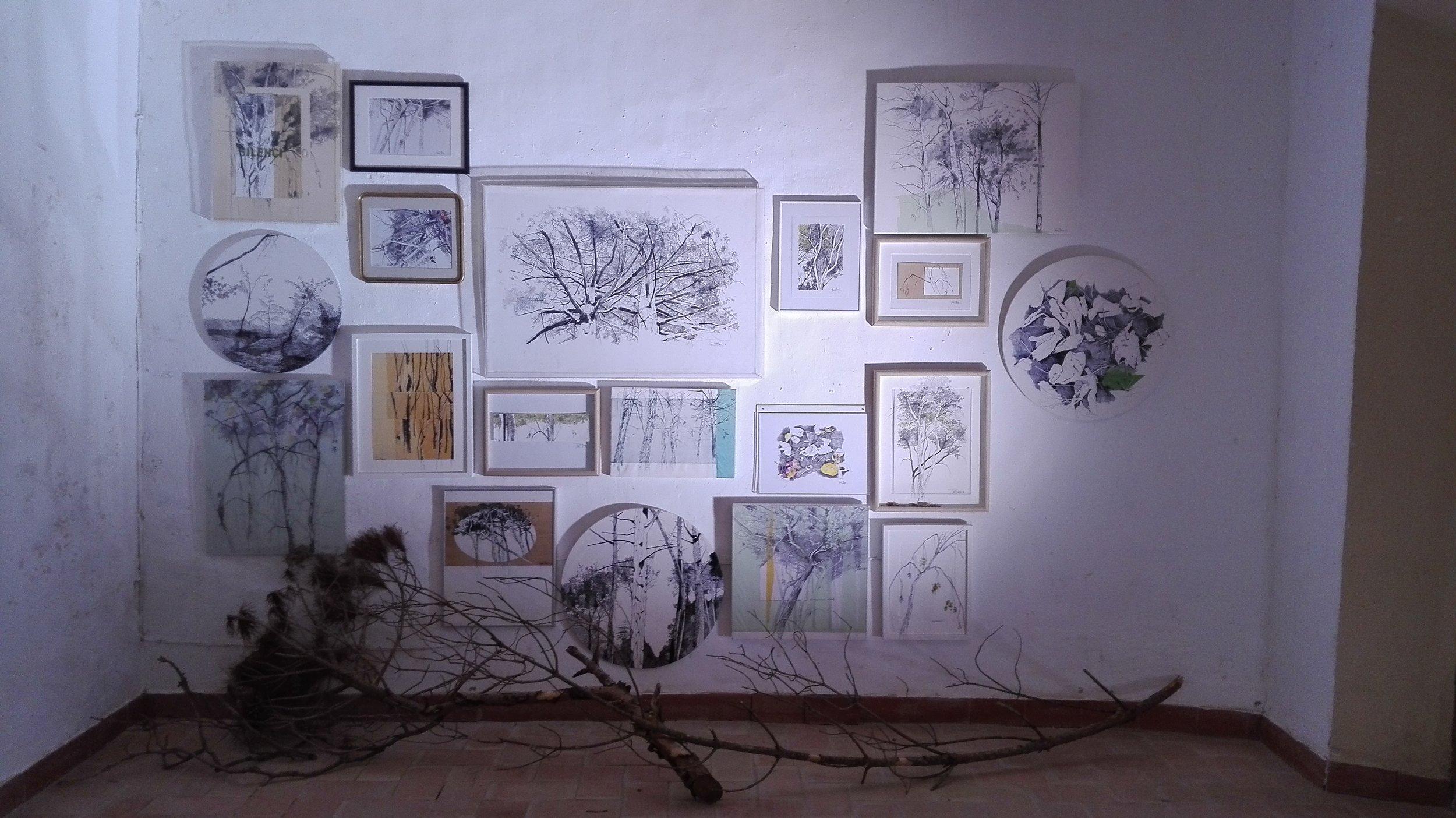 Consciències Naturals, mirant al cel!  Instalación de 18 piezas más ramas de pino blanco  Dibujo s / papel, madera, metacrilato ...  200x300cm