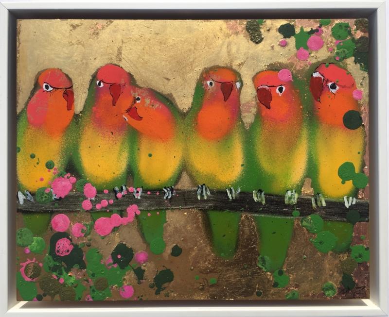 Orange faced lovebirds