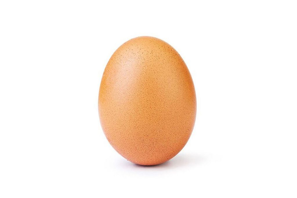 The first Instagram post from the @world_record_egg