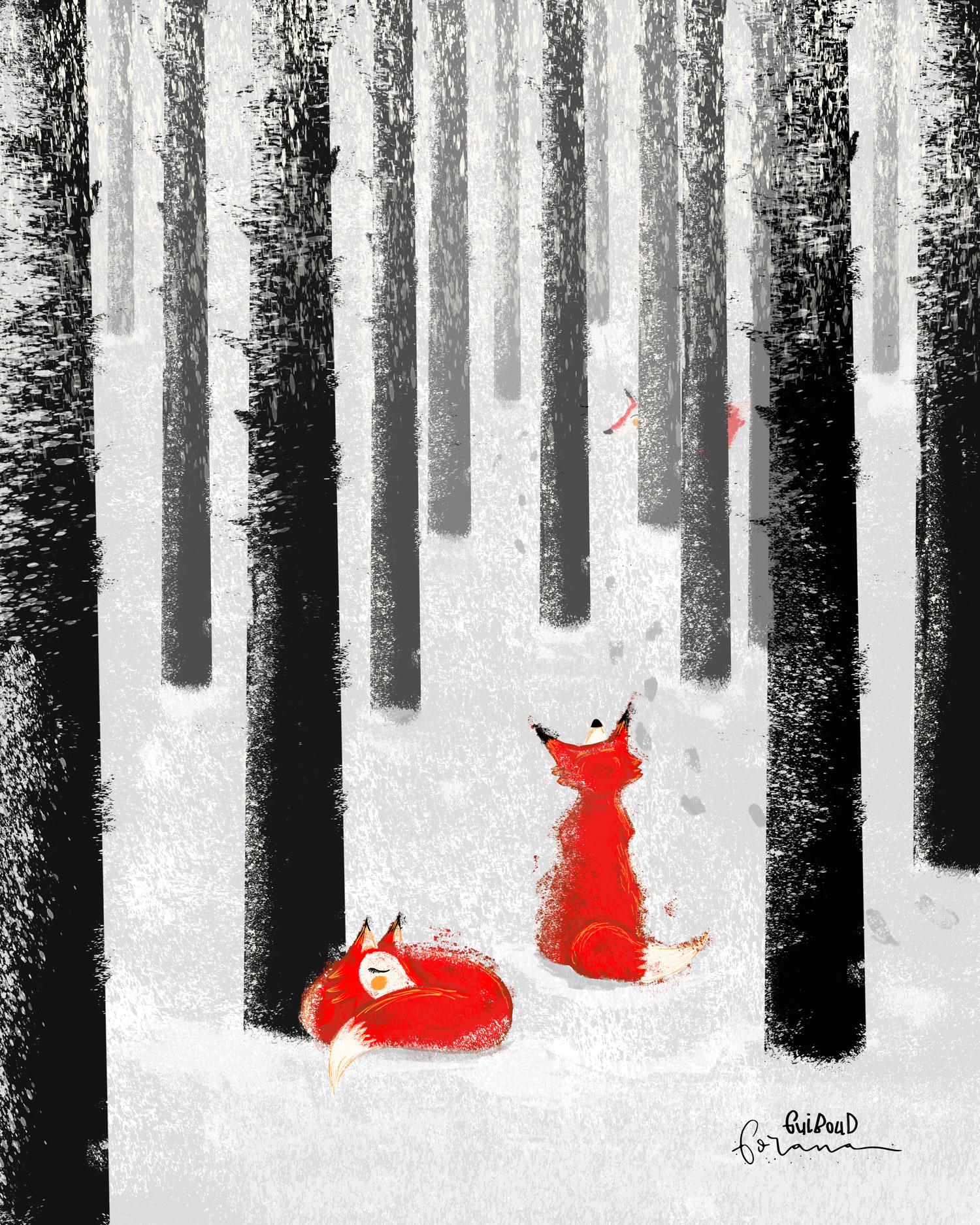 winter-füchse.jpg