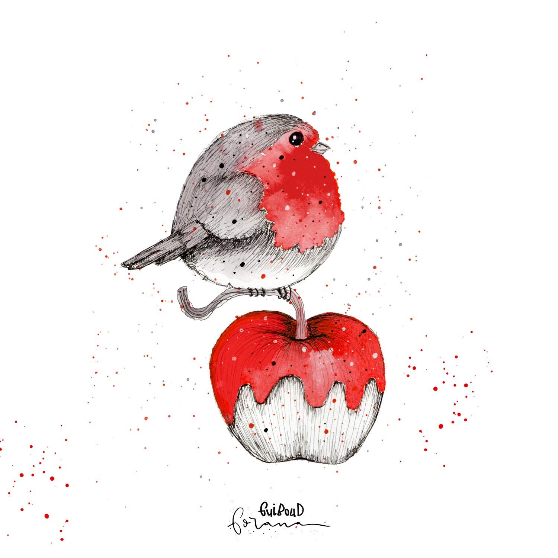 Rotkehlchen - ---Aquarell und Fineliner