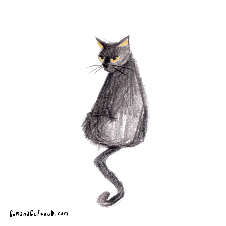 Katze-31.jpg