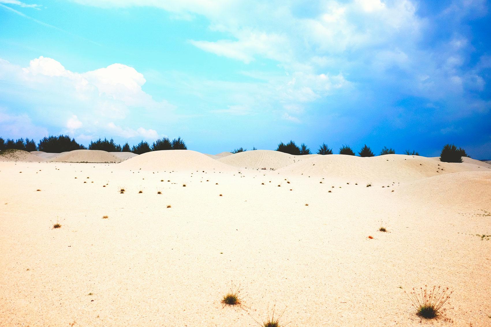 Malacca Desert