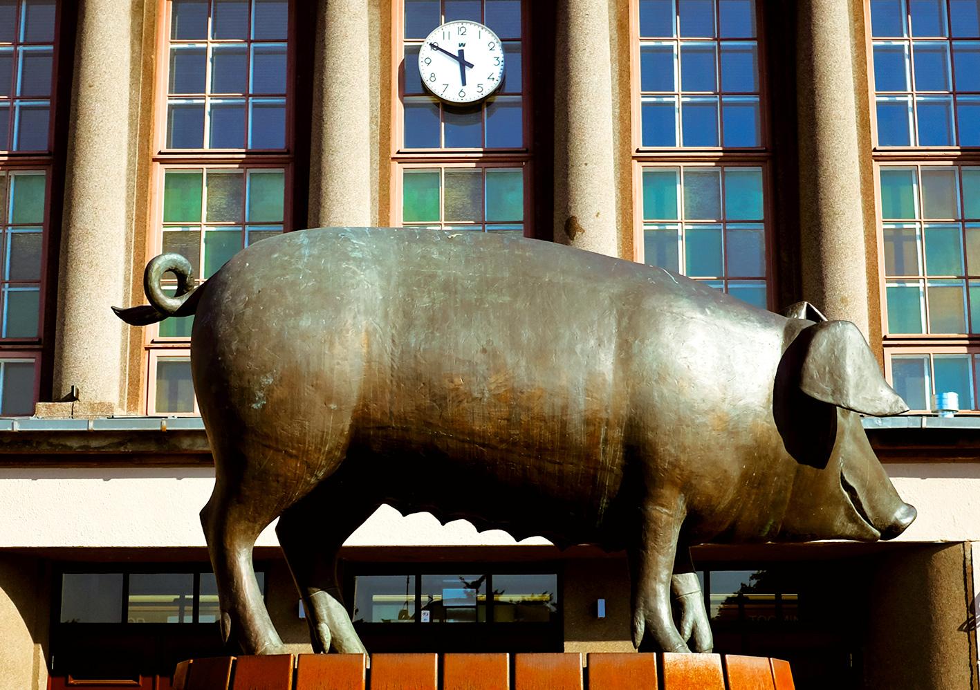 Tartu Estonia Pig