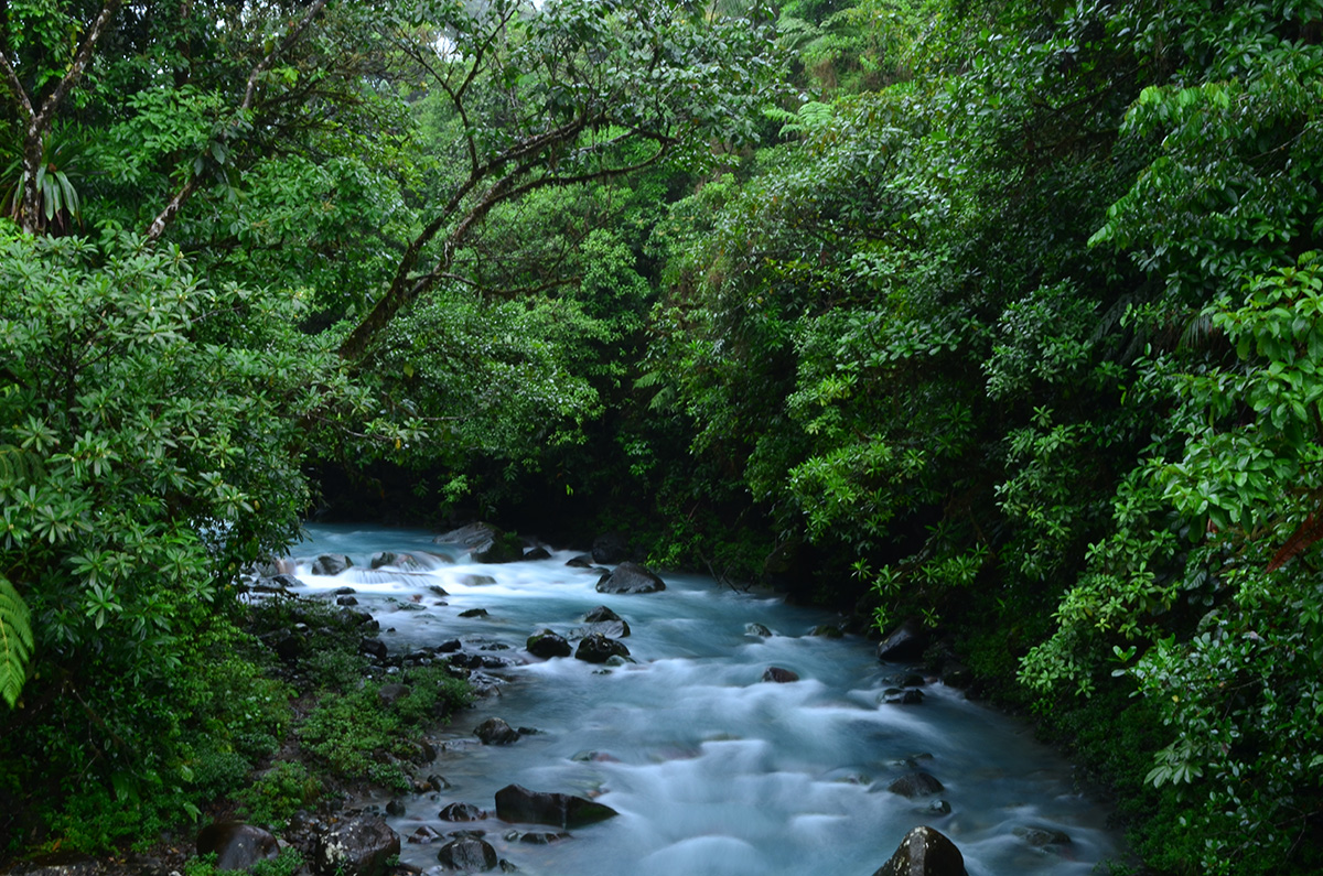 Lush green everywhere you look and stumbling across hidden waterfalls and rivers is not rare in Costa Rica.