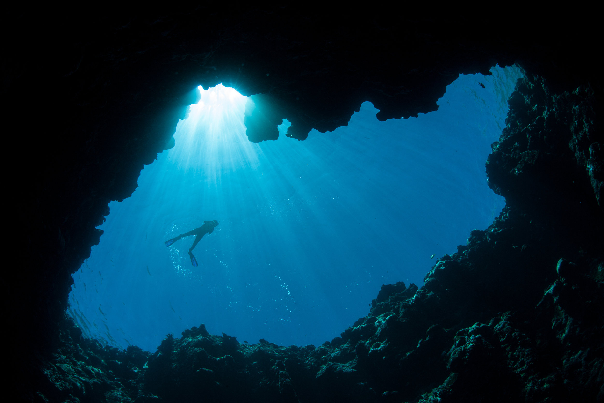 Absolute hot-spot for snorkeling and diving, pioneering in Belize underwater world!