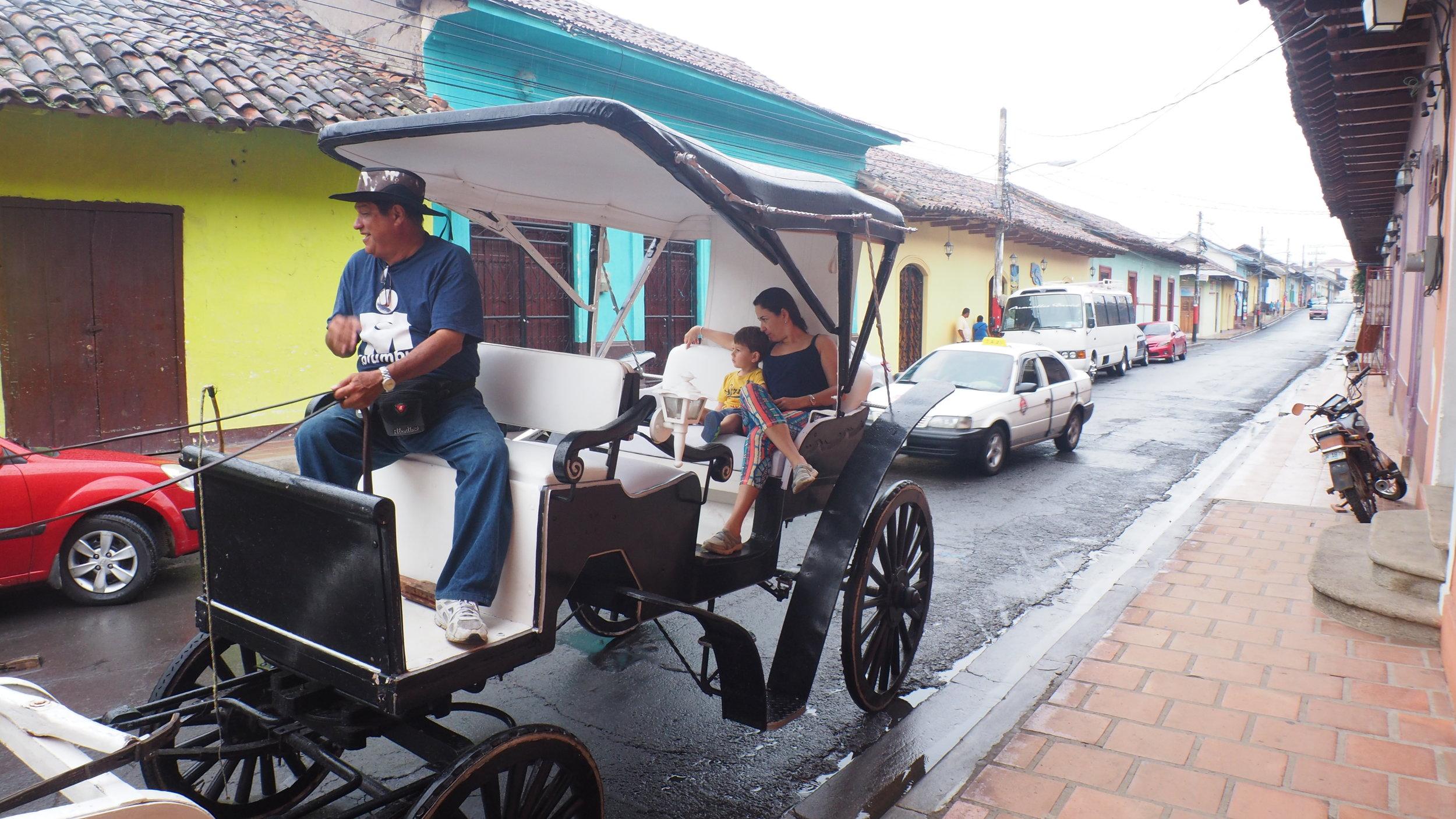 Don Paco Horse carriage City tour Granada.JPG