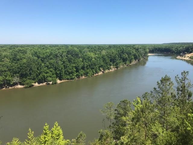 The view from Alum Bluff. Photo by Rob Williams