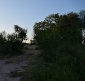 I hiked down this old trail, strewn with water bottles and caches of supplies for crossing migrants.