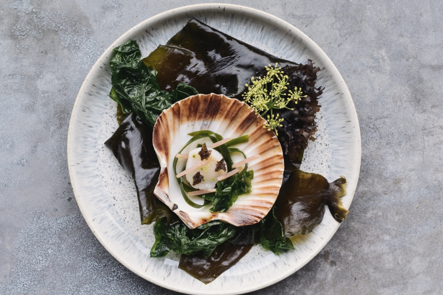 Smoked Scallops with foraged sea vegetables