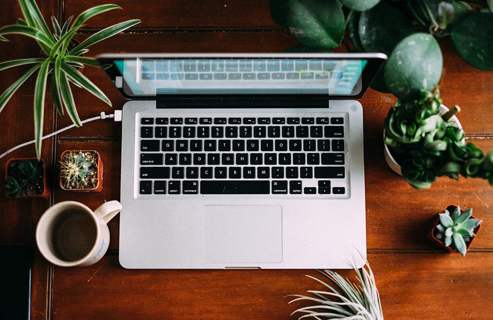 Laptop & Catctus