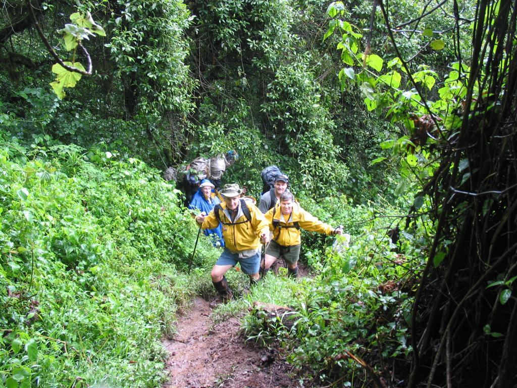 tusker trail kilimanjaro (3).jpg
