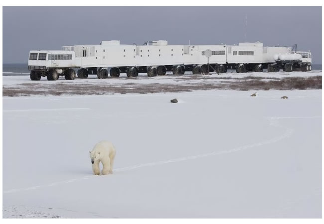 tundra buggy lodge 1.jpg