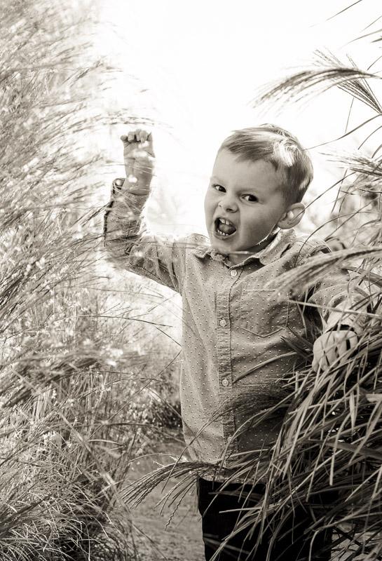 Denver-child-photography-7.jpg