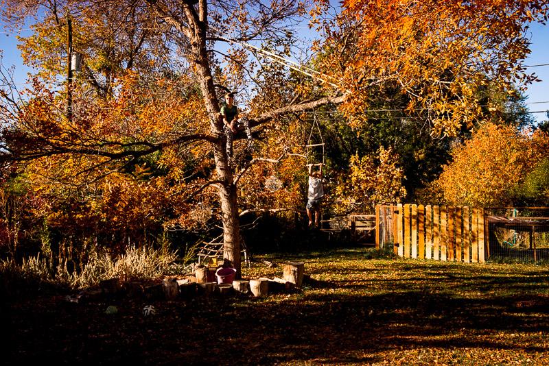 Denver-child-photography-73.jpg