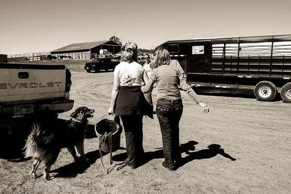 Women walking away from camera arm in arm on a farm.
