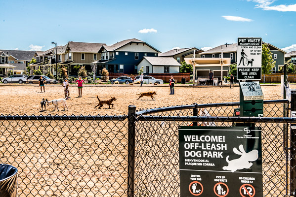 Stapleton off leash dog park.