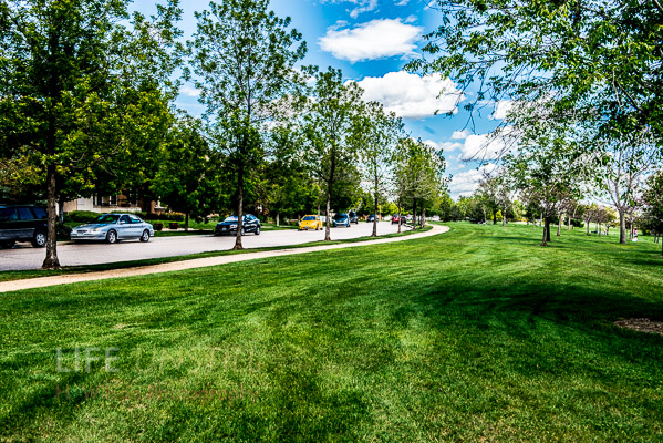 Stapleton neighborhood street with greenbelt.