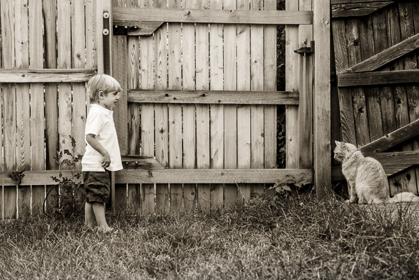 Toddler boy facing off with cat about four feet away.