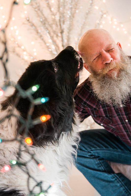 christmas card studio session man and his newfoundland dog