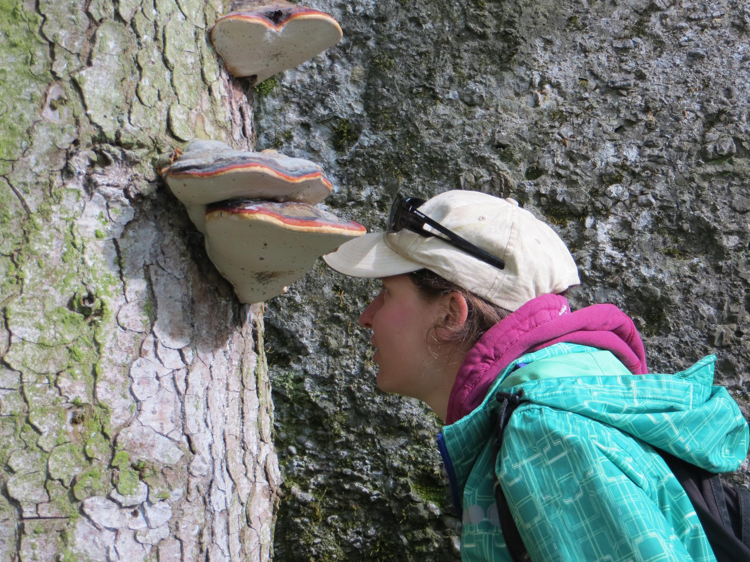 Auf Augenhöhe mit der Natur: Mit Freude und Stauen die Vielfalt betrachten und daraus lernen.