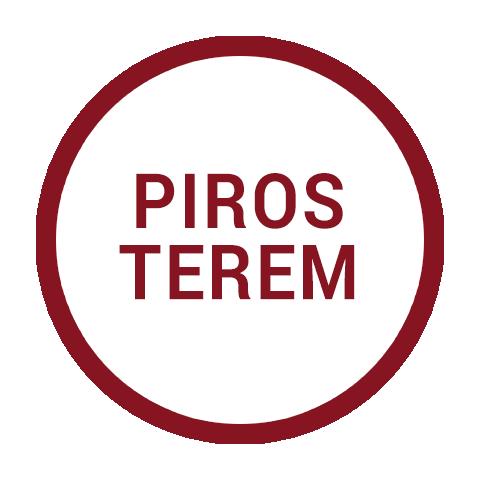 smart-2019-piros-terem.png